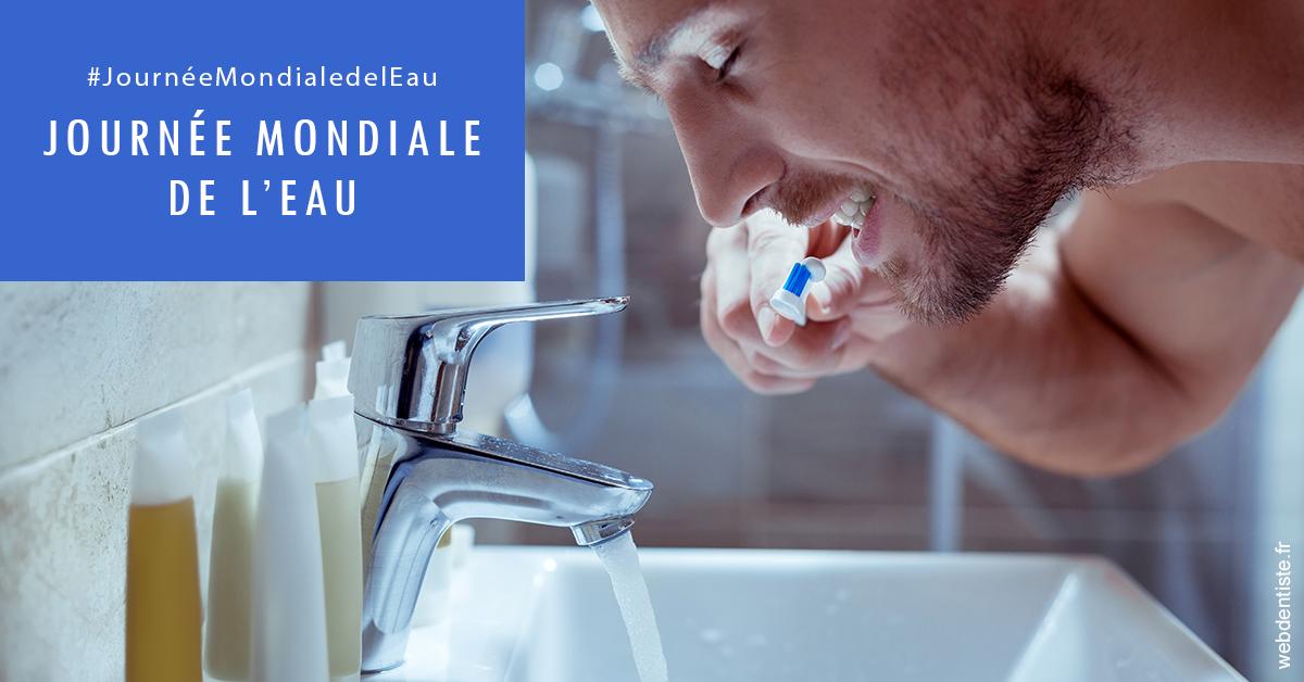 https://dr-haroun-antoine.chirurgiens-dentistes.fr/Journée de l'eau 2