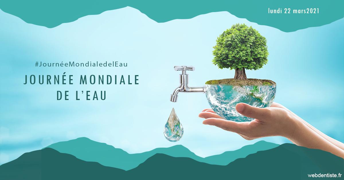 https://dr-haroun-antoine.chirurgiens-dentistes.fr/Journée de l'eau 1